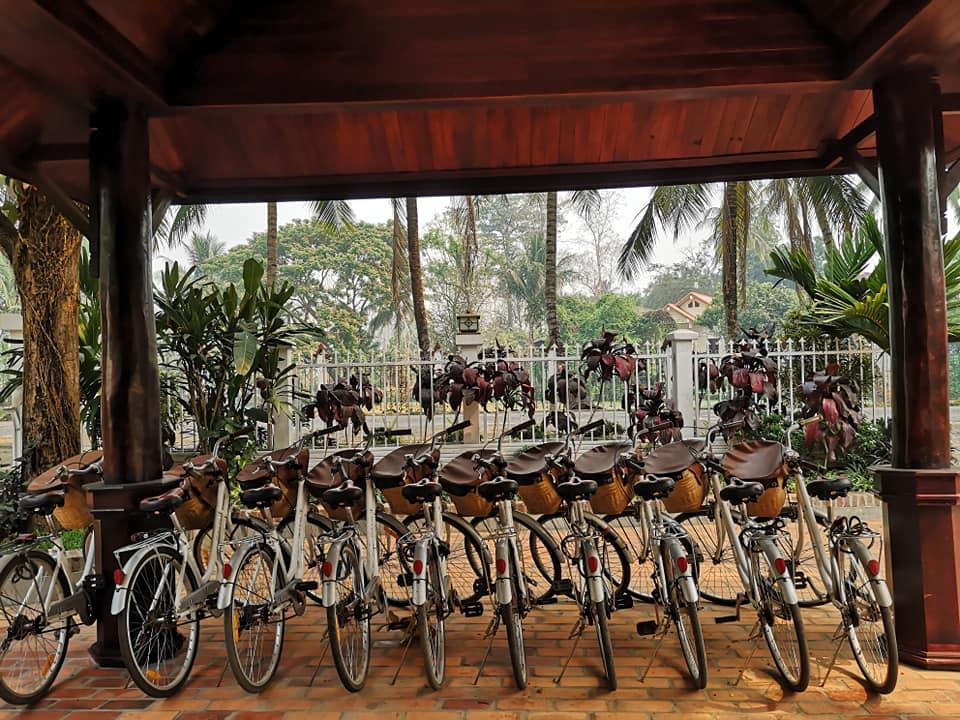 จักรยานสำหรับยืมปั่นฟรีสำหรับผู้พักอาศัย จอดเรียงรายอยู่หน้าโรงแรม