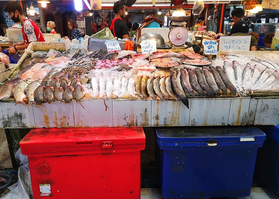 โซนอาหารสด อาหารทะเล ประเภทต่างๆ หลากหลาย