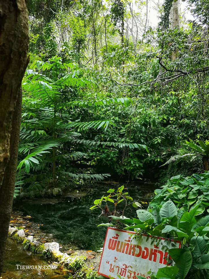 บริเวณตาน้ำ ป่าต้นน้ำบ้านน้ำราด เป็นพื้นที่หวงห้าม ห้ามลงเล่นน้ำ