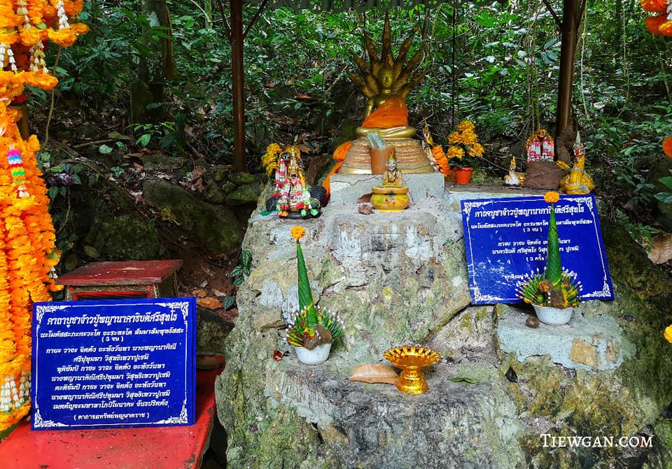 ศาลบูชาจ้าวปู่พญานาคาธิบดีศรีสุทโธ ตั้งอยู่ใกล้ๆ ตาน้ำ ป่าต้นน้ำบ้านน้ำราด