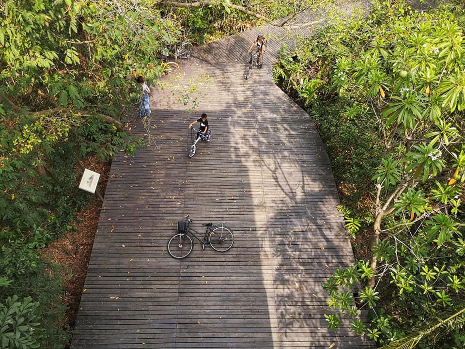 บนหอดูนก ถ่ายลงมาด้านล่าง จุดแลนมาร์คที่นักท่องเที่ยวชอบมาถ่ายรูป